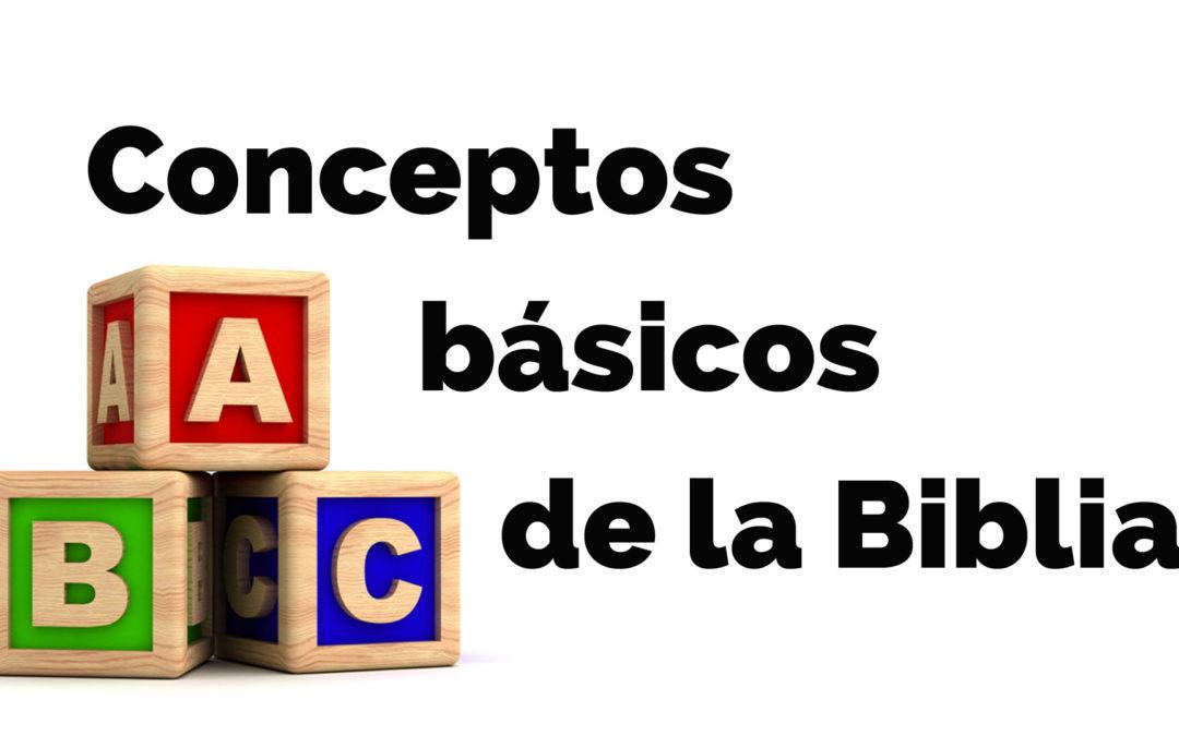 ¿Cuál es la estructura de la Biblia? | Conceptos básicos de la Biblia #2