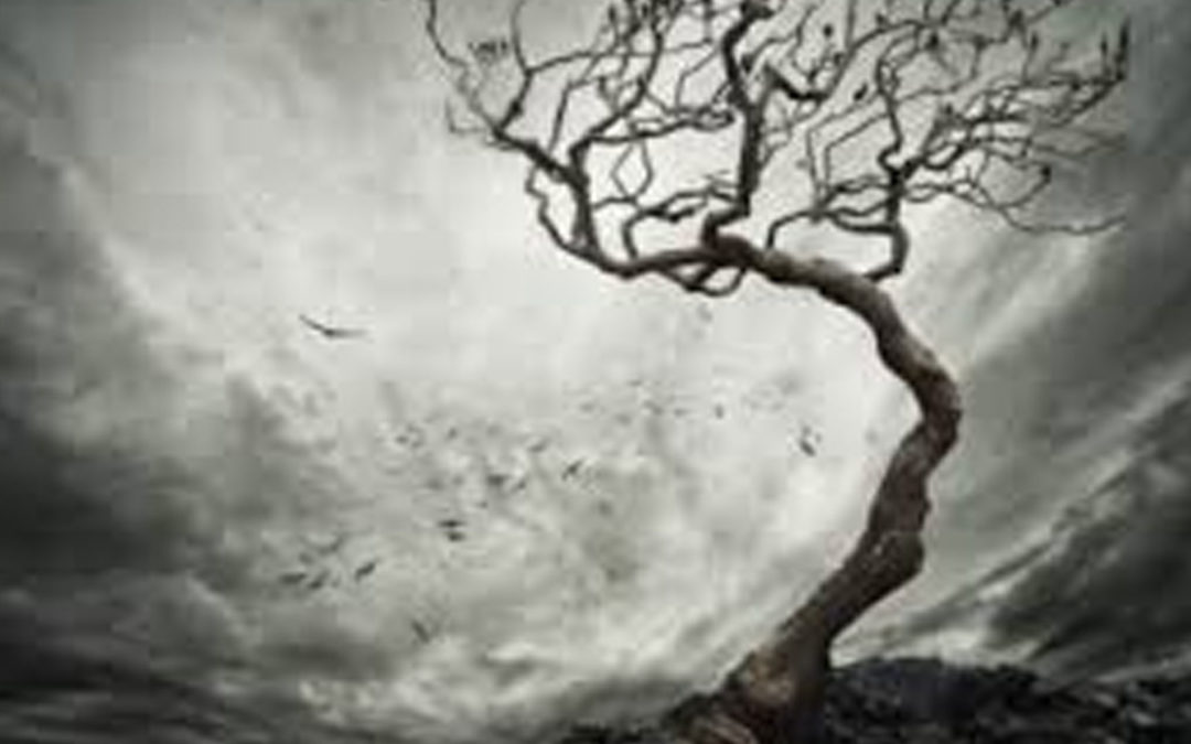 La humanidad bajo el pecado | Principios bíblicos para nuevos creyentes #5